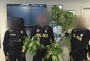 marijuana consumed legal